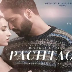 Pachhtaoge (पछताओगे) song lyrics From The album Jaani Ve