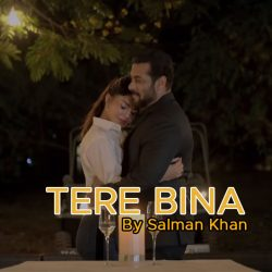 Tere Bina Song Salman Khan Lyrics Hindi and English